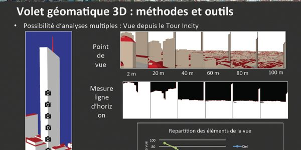 La 3D, objet d'étude, objet intermédiaire