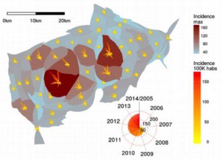 Anamorphose de l'incidence de la dengue par khet entre 2005 et 2014.
