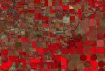 Des données satellites quotidiennes dans les applications de gestion des agriculteurs ?