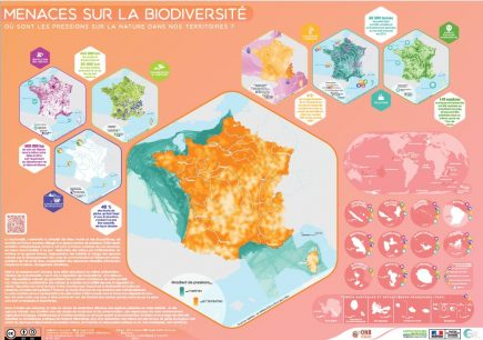 Les menaces qui pèsent sur la biodiversité cartographiées