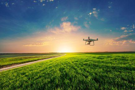 drones mauvaises herbes